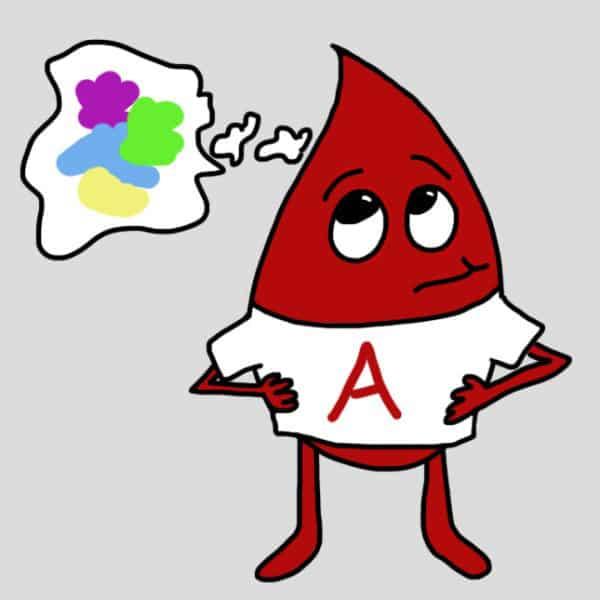 Đặc điểm nhóm máu A