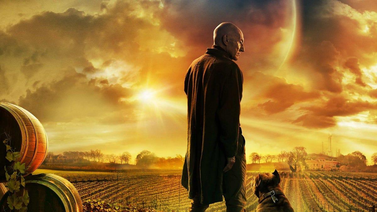 Jean-Luc Picard đứng trong trang trại trồng nho.
