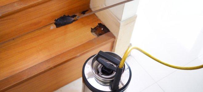 phun xử lý mối mọt được áp dụng cho cầu thang gỗ