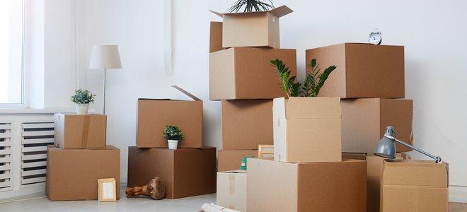 hộp đóng gói để di chuyển