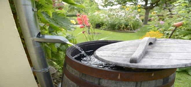 thùng mưa có nước chảy vào từ ống xả xuống