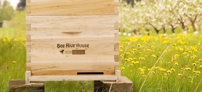 tổ ong trên cánh đồng với hoa và cây