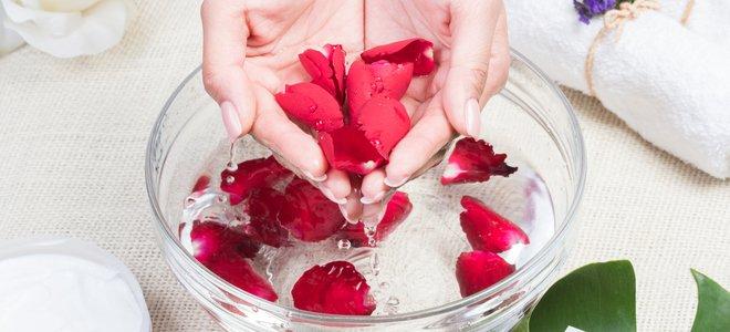 tay cầm cánh hoa hồng trong nước