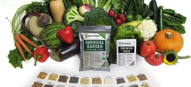 hạt giống sống sót với rau