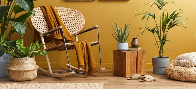 khối gỗ trong không gian nhà với màu sắc tự nhiên và cây trồng trong nhà
