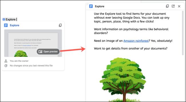 Xem trước tài liệu trong Google Documents